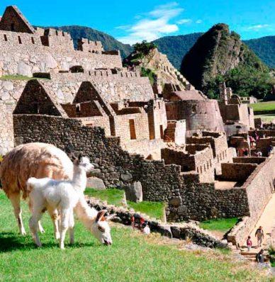 Tour Machu Picchu desde Mexico
