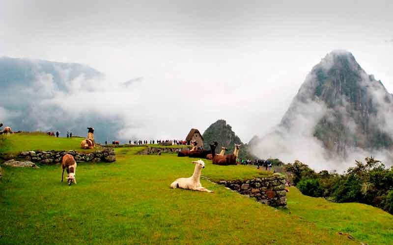 Tour Camino Inca 2 dias